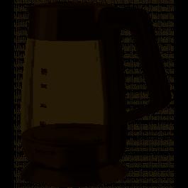 Czajnik elektryczny z regulacją temperatury Sencor SWK 1890 SS